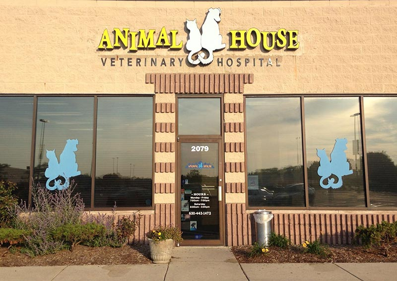 Animal House Veterinary Hospital, St. Charles